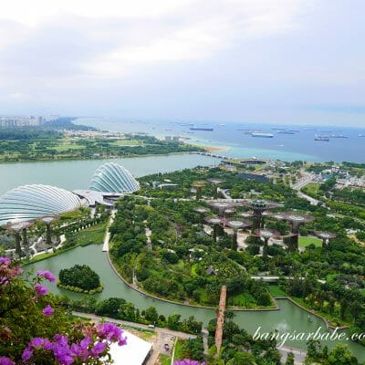 Top 5 Things To Do in Marina Bay Sands