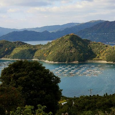Things To Do in Ehime